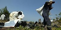 PHE ONWJ Fokus Pembersihan Sisa Tumpahan Minyak di Pesisir Karawang